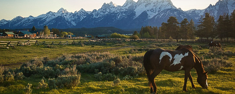 Spring Into A Great Dude Ranch Vacation - The Spur Alliance