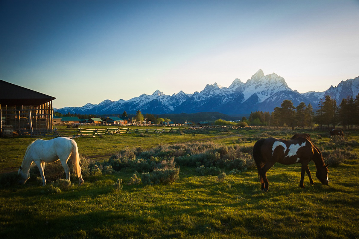 Wyoming Dude Ranch Travel Package  Triangle X Ranch