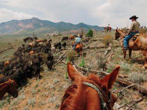Lost Vally Colorado