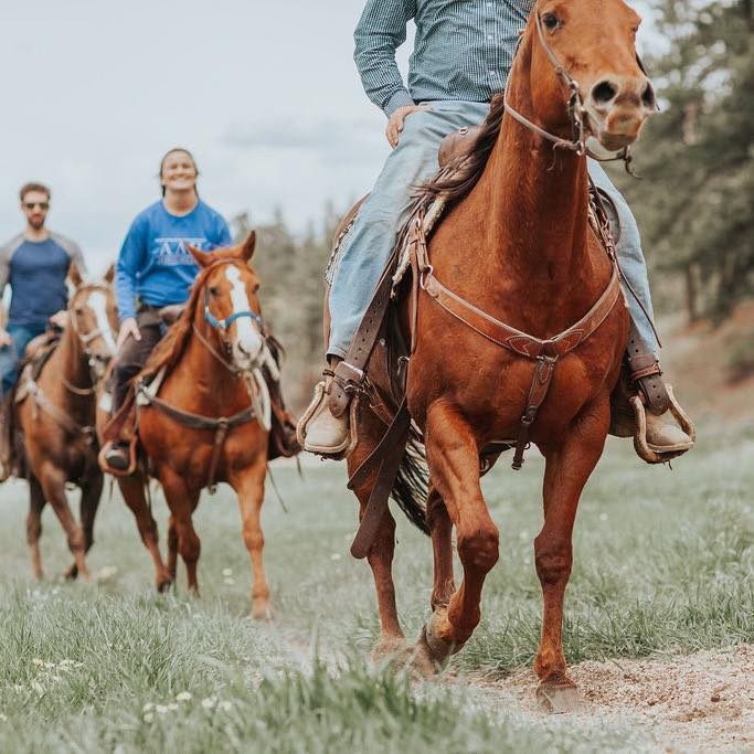 Lost Vally Ranch