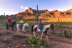 Revive your Mental Health and Physical physic at White Stallion Ranch