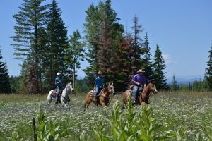 Revive your physical well being at Western Pleasure Ranch