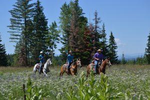 Western Pleasure Ranch